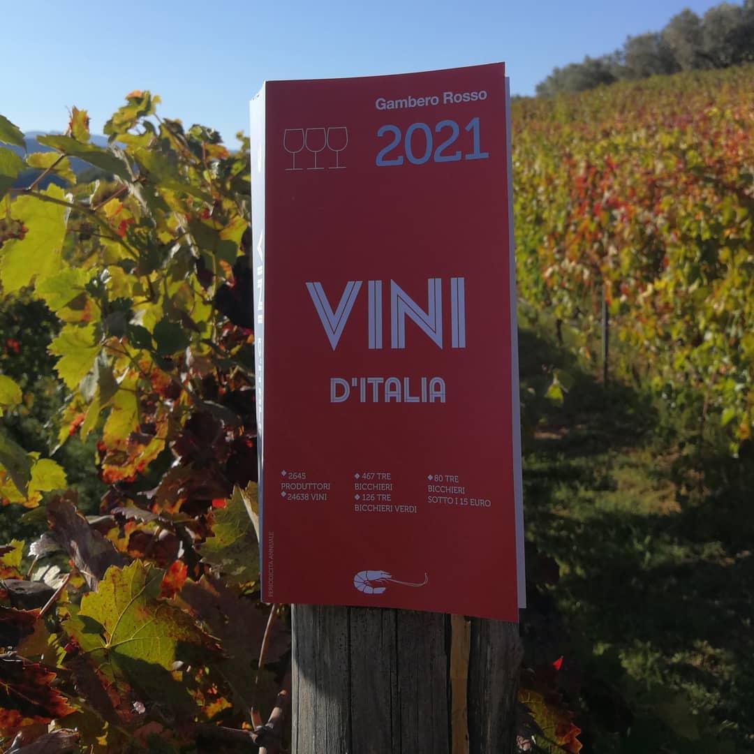 Siamo nella guida Vini d'Italia 2021 del gambero rosso